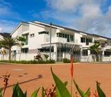 Tree Residency,