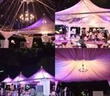 Canopy Arabian & Transparent Rental