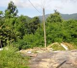 Pearl Hill,