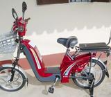 Electrical Bicycle