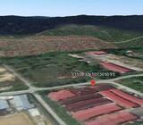 Agri Land Non Bumi Lot Kundang Easy Acc